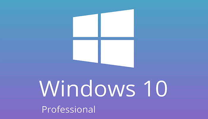 What is Windows 10 Professional
